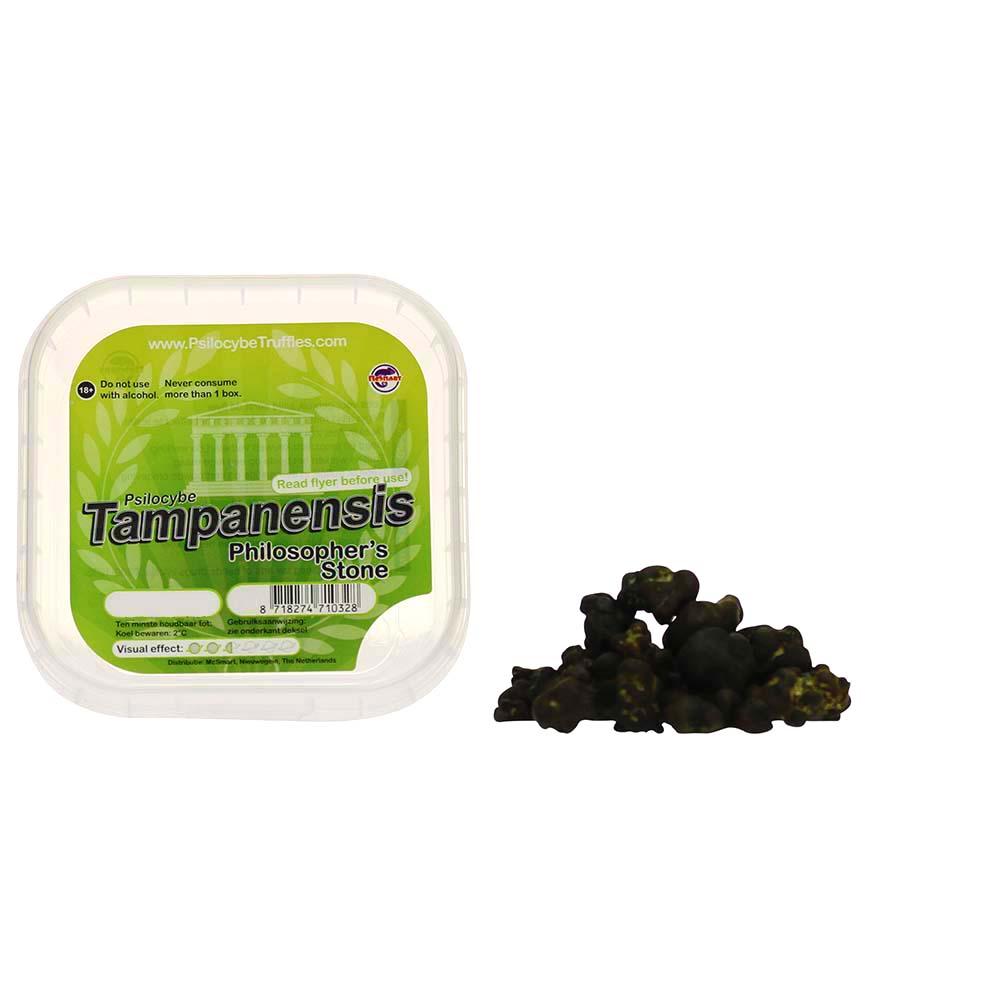 ✅ Smartific McSmart Tampanensis Magische Truffels (Psilocybe) Smartific.com