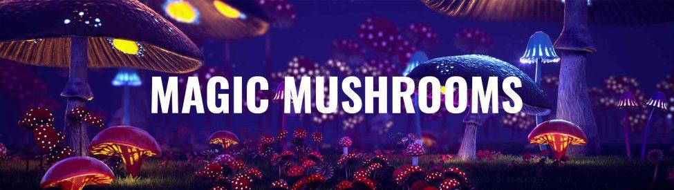 Category-Mushrooms