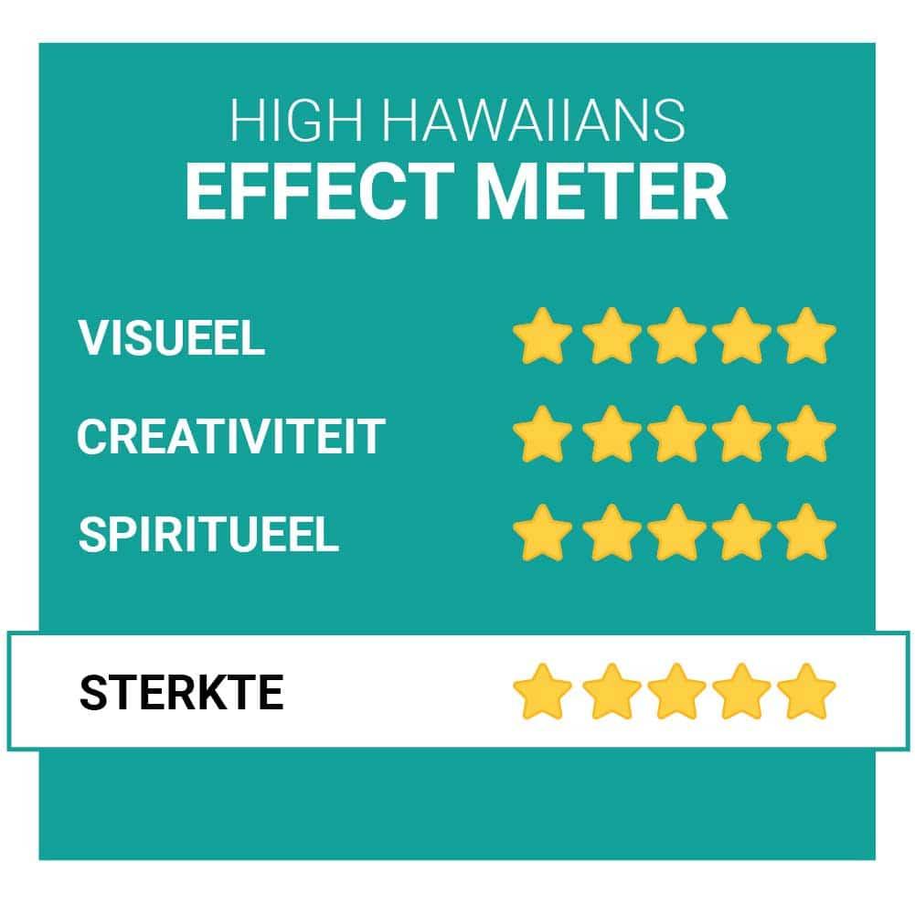 High Hawaiians Magische Truffel Effecten Smartific.nl