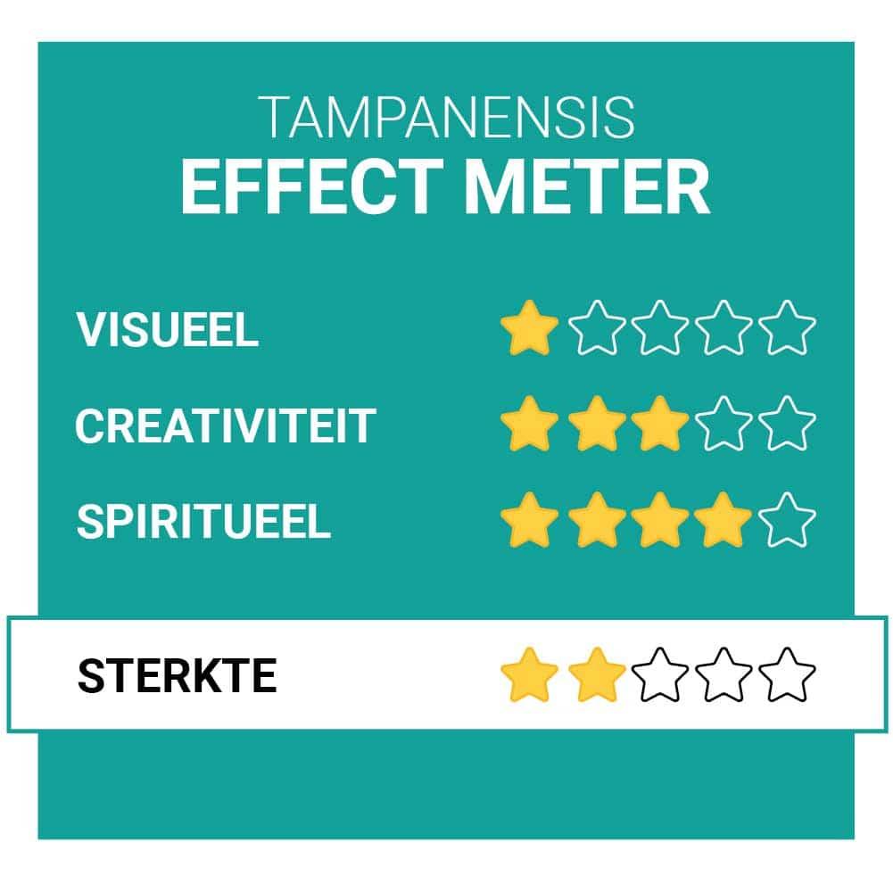 Tampanensis Magische Truffel Effecten Smartific.nl