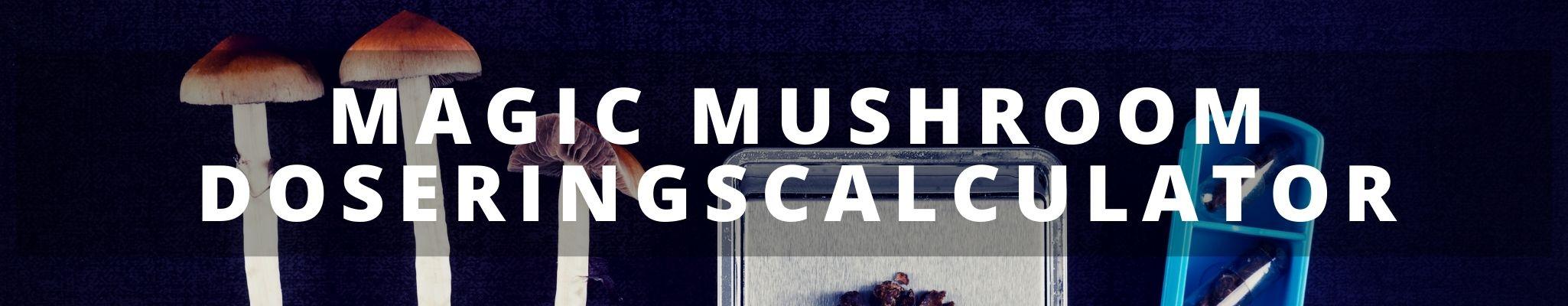 ✅ Magic Mushroom Doseringscalculator - bereken je dosis Paddos en Magic Truffels direct - Smartific.com