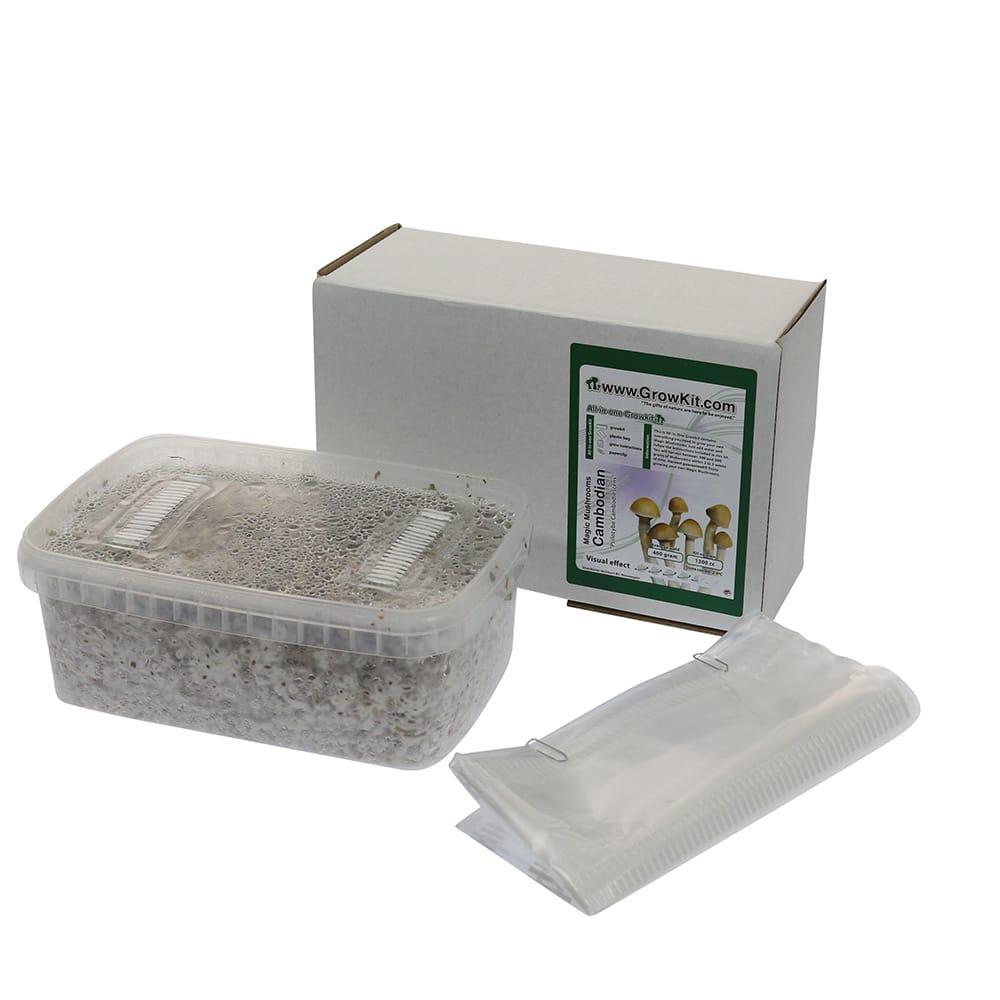 ✅ McSmart Cambodian Paddo Grow Kit (Psilocybe Cambodiescens) 1200cc analyse - Magische Paddo's - Smartific.com