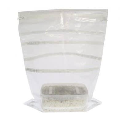 ✅ McSmart B+ Paddo Grow Kit (Psilocybe Amplus) 1200cc analyse - Magische Paddo's - Smartific.com