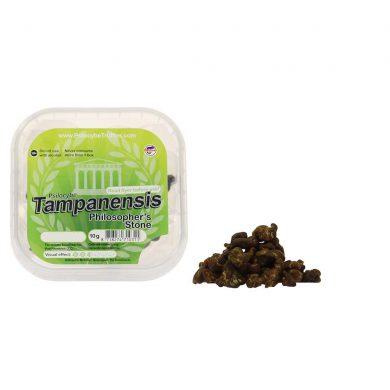 McSmart Tampanensis Psilocybe Magic Truffles (10 grams)