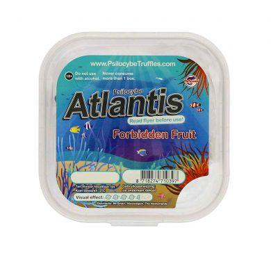 Atlantis Psilocybe Magic Truffles