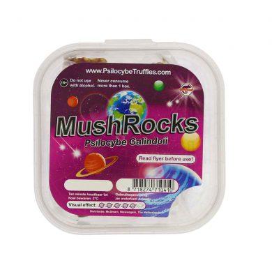 MushRocks Psilocybe Galindoii Magic Truffels Smartific.nl