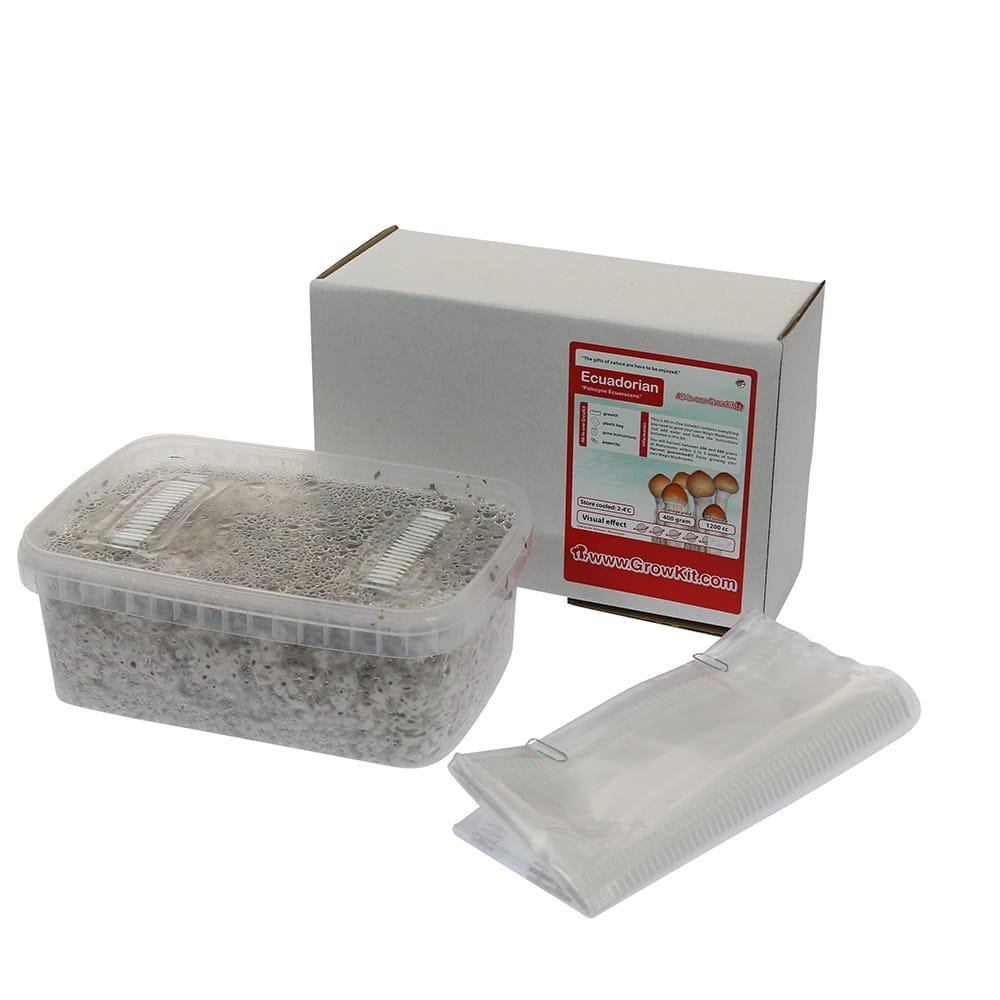 ✅ McSmart Ecuadorian Paddo Grow Kit (Psilocybe Equaescens) 1200cc analyse - Magische Paddo's - Smartific.com