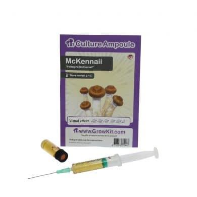 ✅ Culture Ampoule McKennaii Sporenspuit (Psilocybe) analyse - Magische Paddo's - Smartific.com
