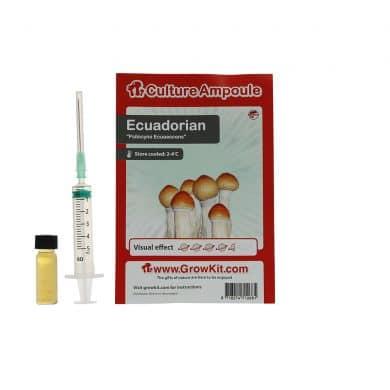 ✅ Culture Ampoule Ecuadorian Sporenspuit(Psilocybe Equaescens) analyse - Magische Paddo's - Smartific.com