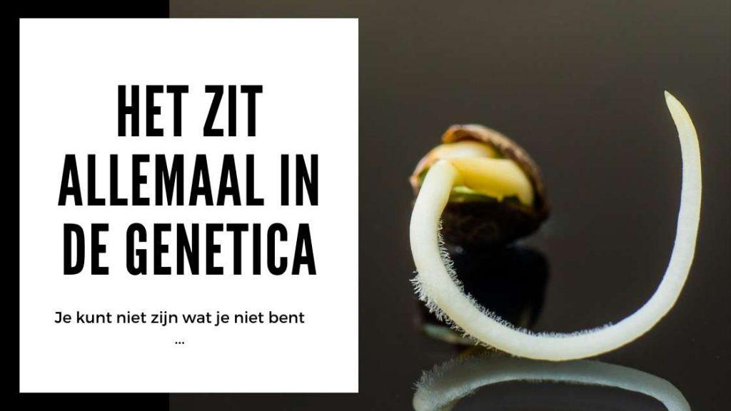 ✅ Hennep Zaden Test - Het zit allemaal in de genetica - Smartific