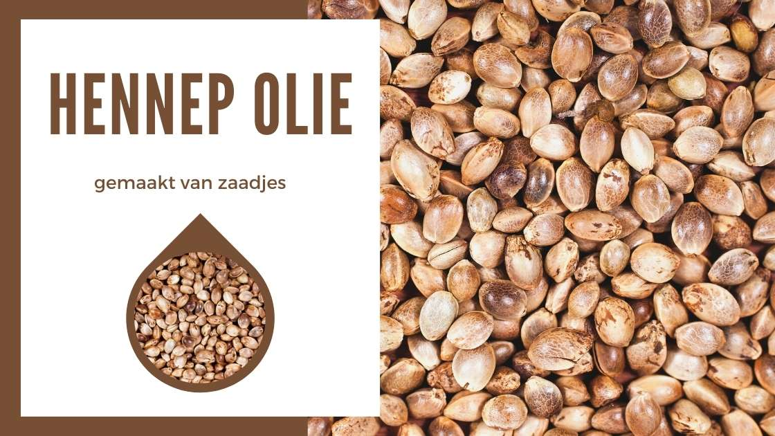 Hennep olie VS CBD Olie - Hennep olie - gemaakt van zaadjes - Smartific
