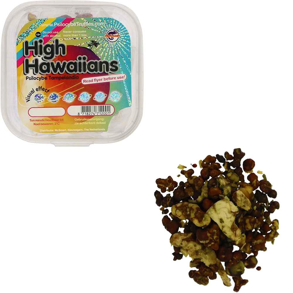 High Hawaiians Psilocybe Tampelandia Magic Truffles