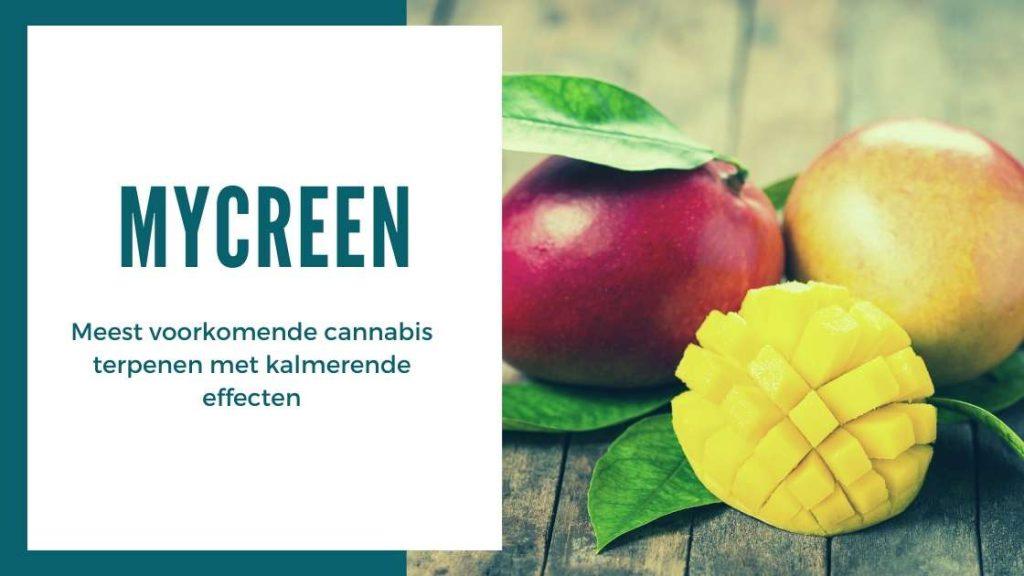 ✅ Ultieme Terpenen Gids - Mycreen - Smartific