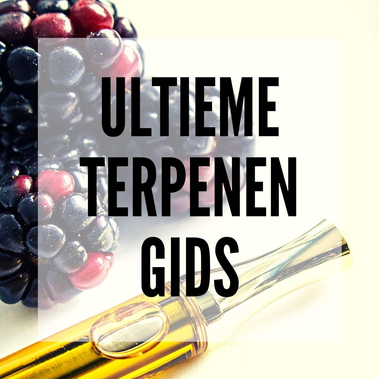 ✅ Ultieme Terpenen Gids - blog post - Smartific