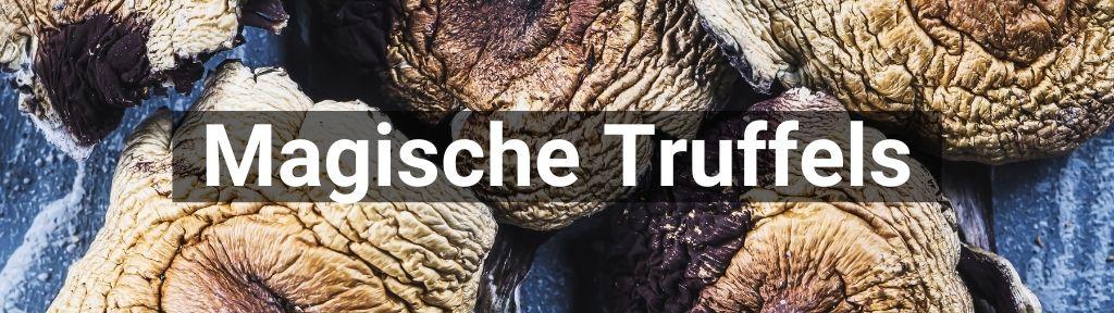 ✅ Alle hoge kwaliteit Magische truffels producten van Smartific.nl