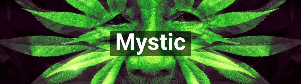 ✅ Alle hoge kwaliteit Mystic producten van Smartific.nl