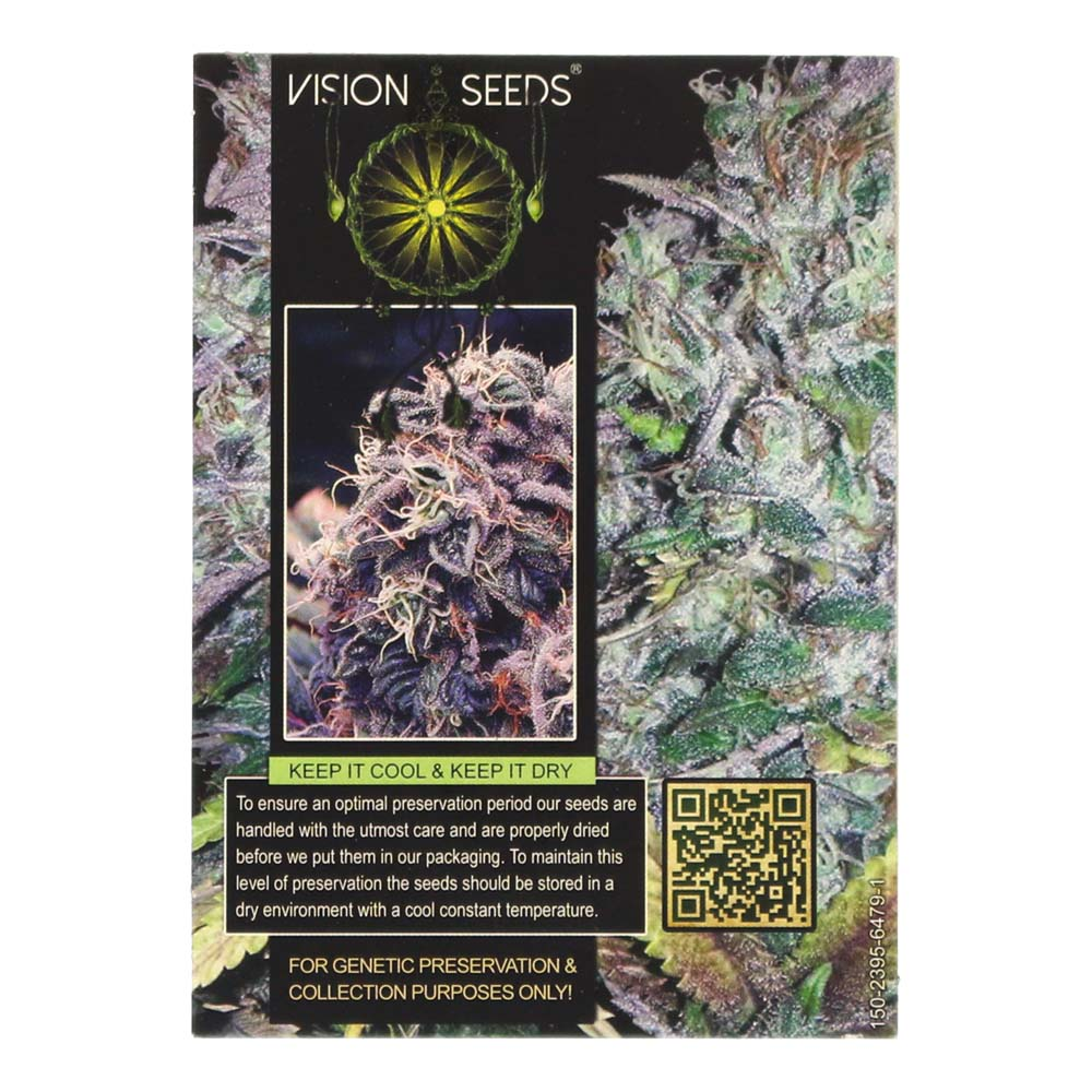 🌿 Vision Seeds Wietzaadjes Auto BLUEBERRY BLISS Smartific 2014190/2014189