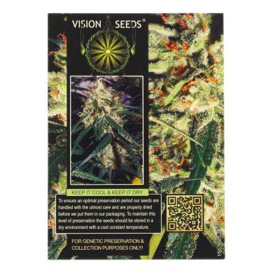 🌿 Vision Seeds Wietzaadjes Auto DELHI CHEESE Smartific 2014194/2014193
