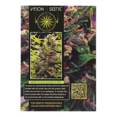 🌿 Vision Seeds Wietzaadjes Auto LA BLANCA GOLD Smartific 2014196/2014195