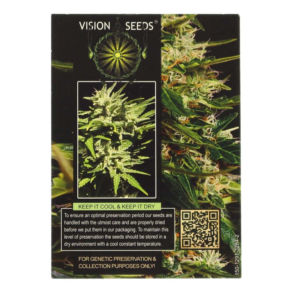 🌿 Vision Seeds Wietzaadjes Auto SUPER SKUNK Smartific 2014202/2014201
