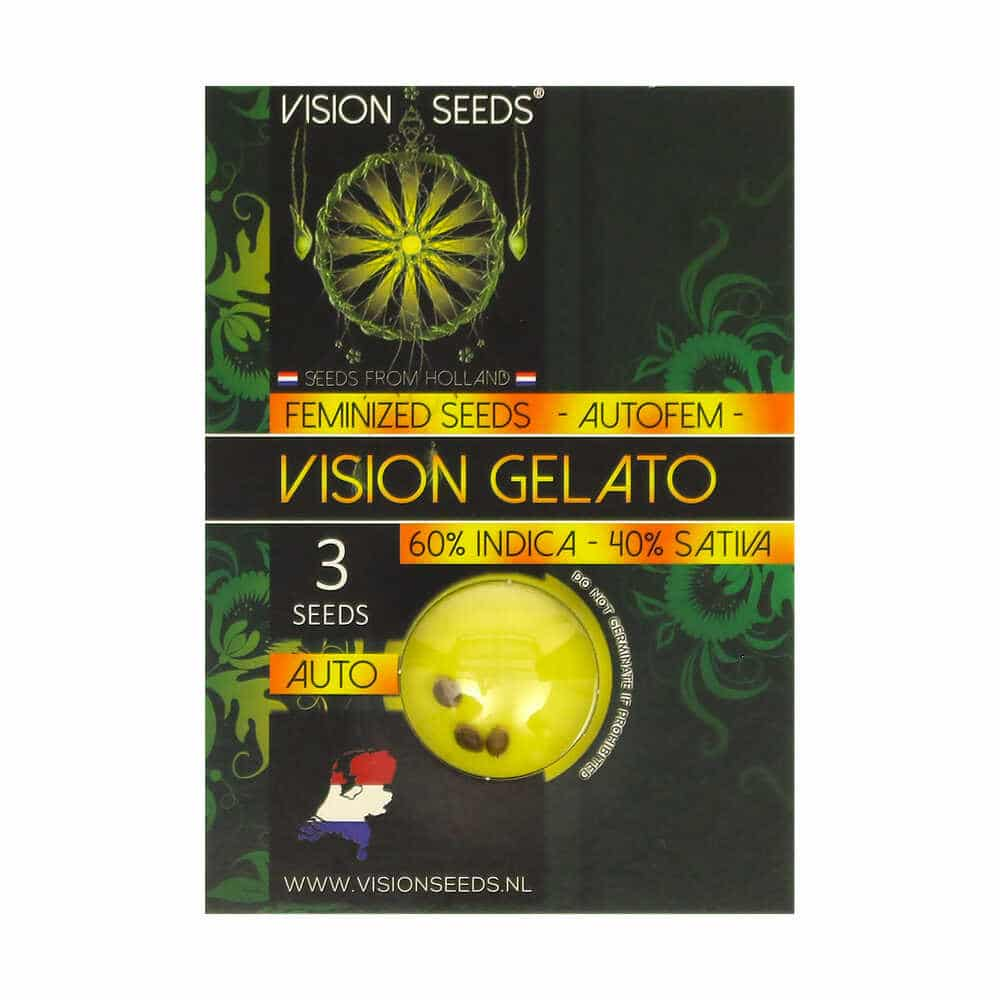 🌿 Vision Seeds Wietzaadjes Auto VISION GELATO Smartific 2014208/2014207
