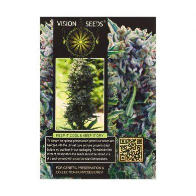 🌿 Vision Seeds Gefeminiseerd Wietzaadjes AK-49 Smartific 2014218/2014217