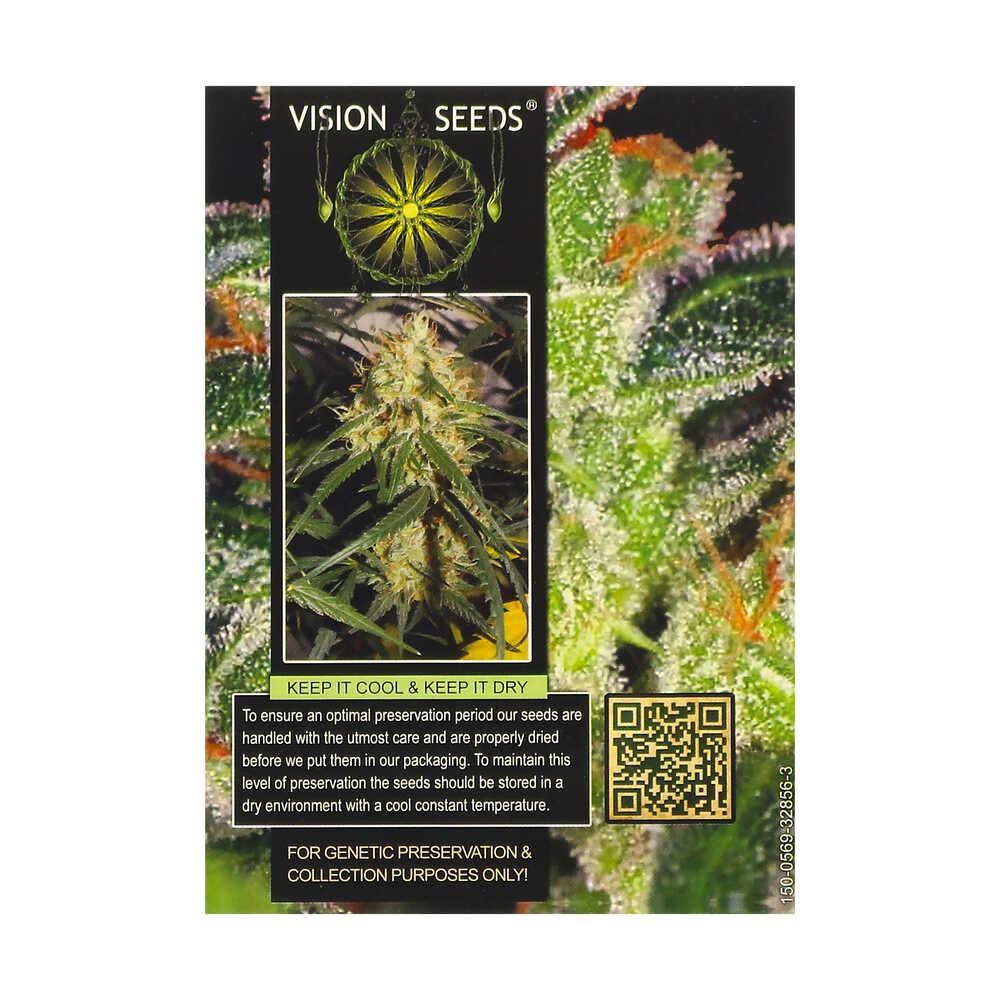 🌿 Vision Seeds Gefeminiseerd Wietzaadjes CHEESE Smartific 2014234/2014233