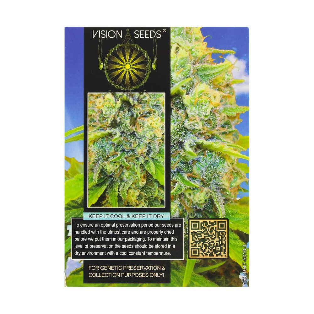 🌿 Vision Seeds Gefeminiseerd Wietzaadjes MEDICAL 49 (CBD+) Smartific 2014252/2014251