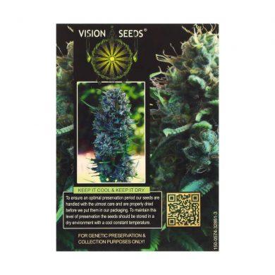 🌿 Vision Seeds Gefeminiseerd Wietzaadjes SILVER HAZE Smartific 2014266/2014265