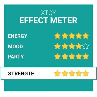 XTCY Party Pillen Effecten Smartific.nl