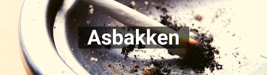 ✅ Alle hoge kwaliteit Asbakken producten van Smartific.nl