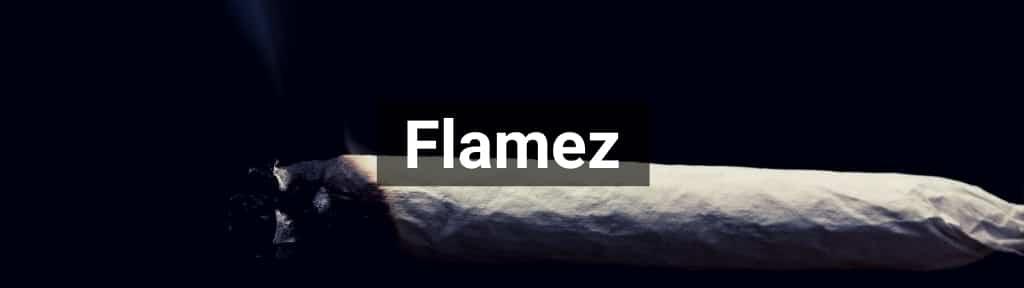 ✅ Alle hoge kwaliteit Flamez producten van Smartific.nl