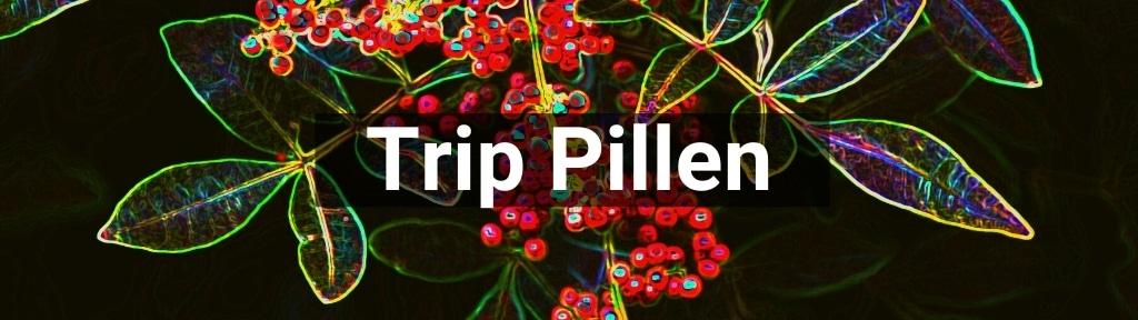✅ Alle hoge kwaliteit Trip pillen producten van Smartific.nl
