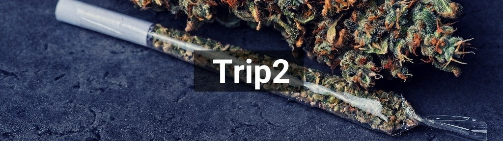 ✅ Alle hoge kwaliteit Trip2 producten van Smartific.nl