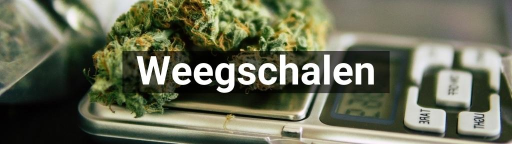 ✅ Alle hoge kwaliteit Weegschalen producten van Smartific.nl