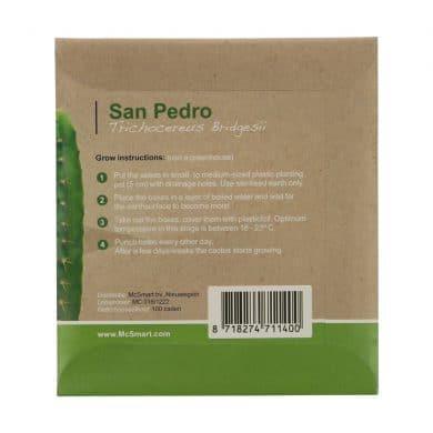 🧐 San Pedro cactus zaden (Trichocereus Bridgesii) Smartific 8718274711400