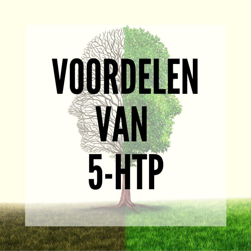 Wat kan 5-HTP voor je doen? - Smartific blog advies thumbnail