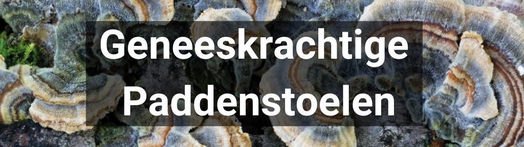 ✅ Alle hoge kwaliteit Geneeskrachtige Paddenstoelenproducten van Smartific.nl