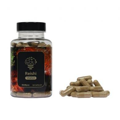 Reishi geneeskrachtige paddenstoelen supplementen kopen Smartific 8718274718263
