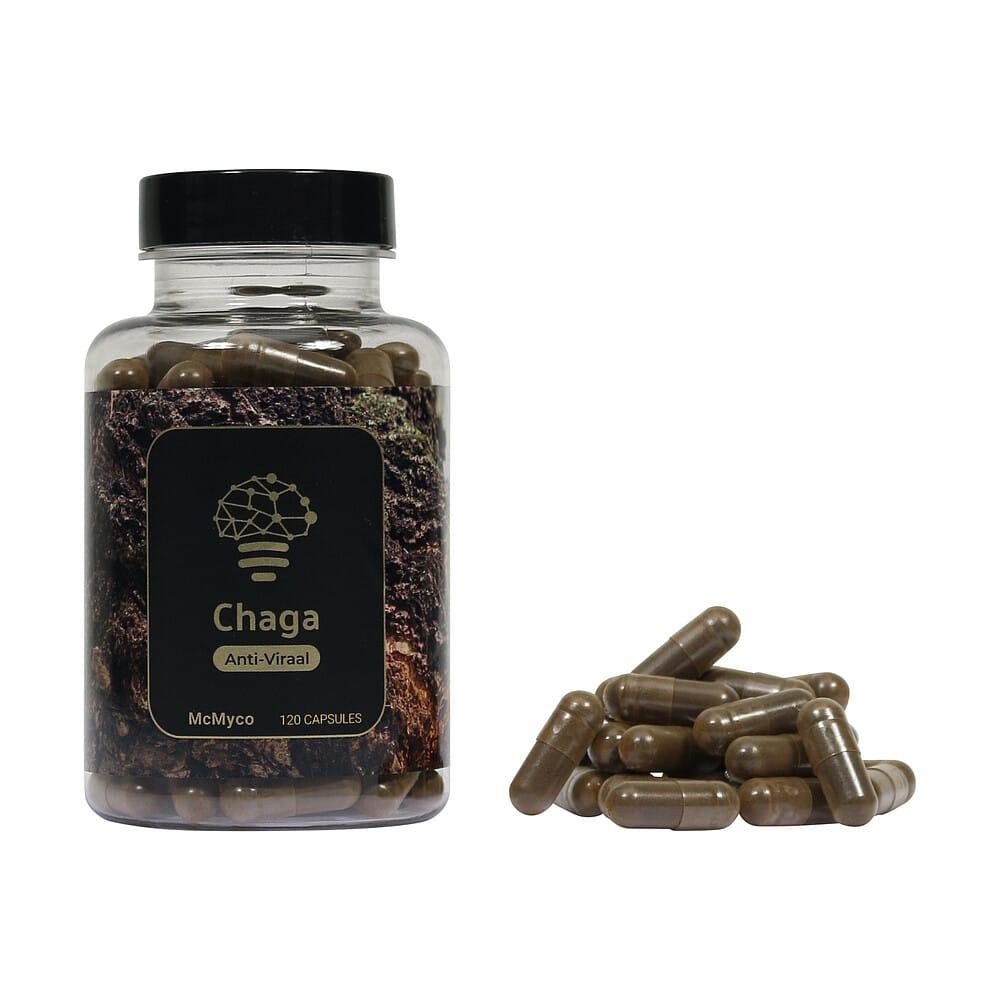 Chaga geneeskrachtige paddenstoelen supplementen kopen Smartific 8718274718270