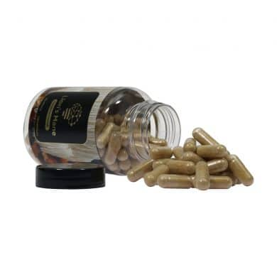 Lion's Mane geneeskrachtige paddenstoelen supplementen kopen smartific 8718274718294