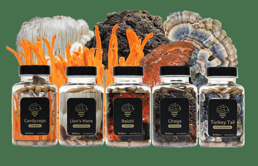 geneeskrachtige paddenstoelen kopen