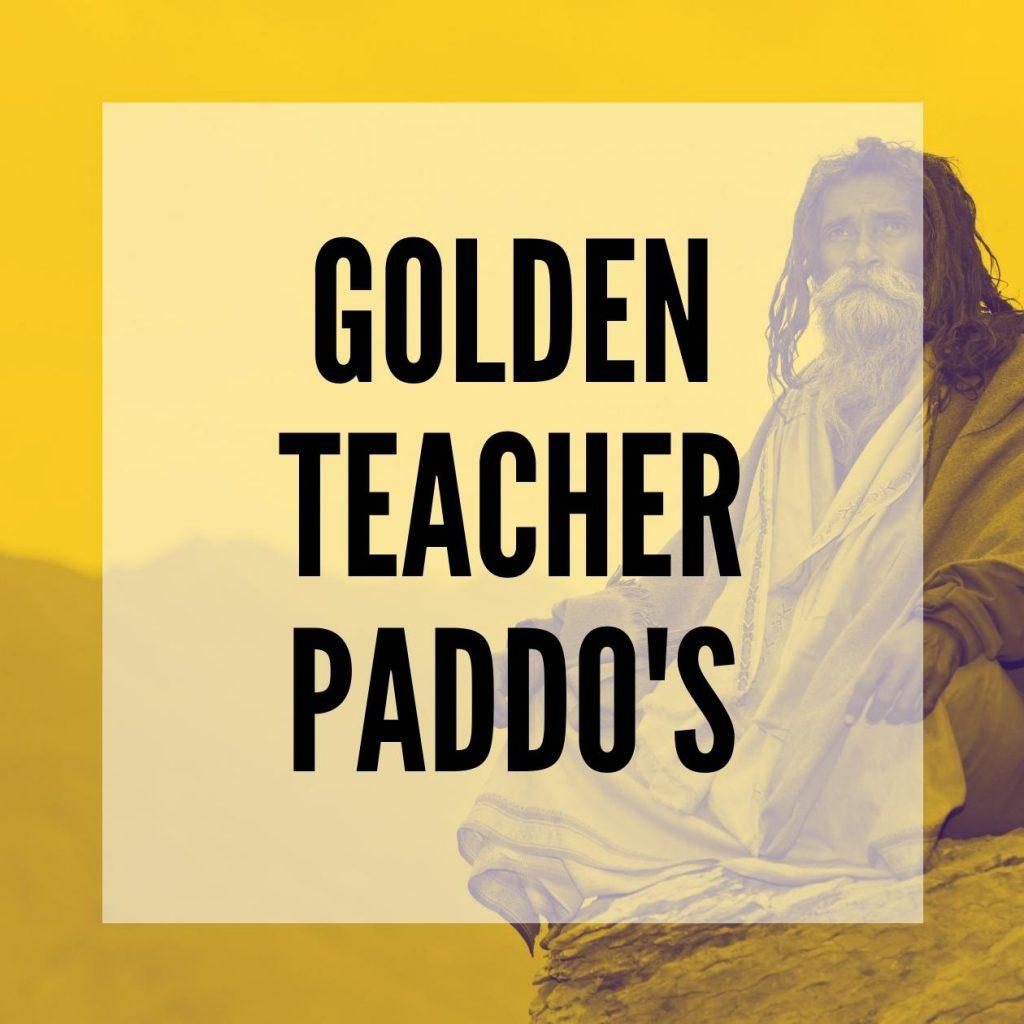 Golden teacher Paddo