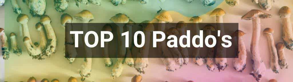 Top 10 beste paddo's
