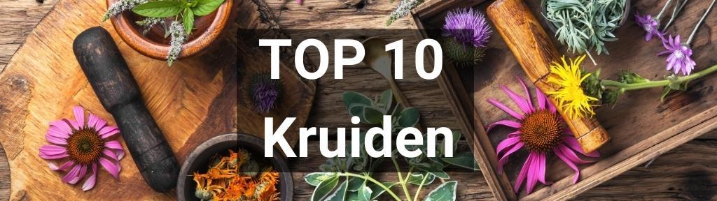✅ Top 10 Kruiden van Smartific.nl