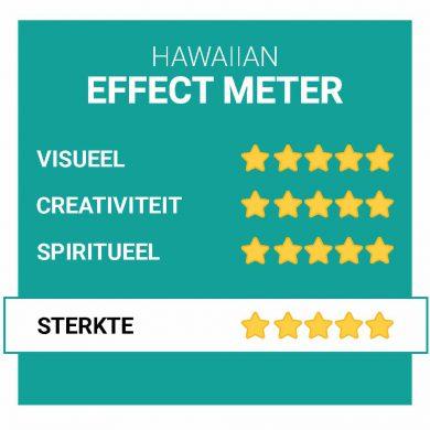 Hawaiian-Effecten-Smartific.nl