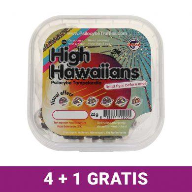 High Hawaiians Magic Truffels 4+1 gratis