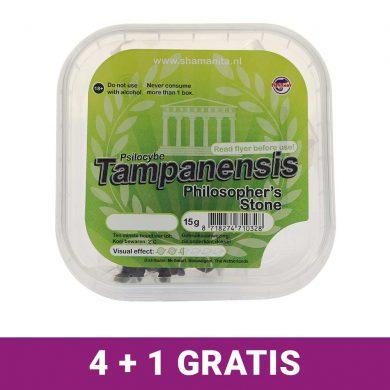 Tampanensis Magic Truffels 4+1 Gratis